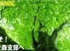【JAF青森】JAF青森支部と鰺ヶ沢町「観光振興に関する連携協定」を締結