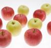 青森・甘くておいしいリンゴのために進化している日本のリンゴ栽培業の努力に驚き=中国メディア