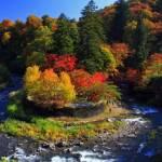 2017 黒石【紅葉・見ごろ】中野もみじ山⦅10月中旬~10月下旬⦆