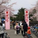 「青森春まつり2018」in 合浦公園!
