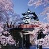 「弘前・桜祭り100周年」早咲き予想に合わせ「準まつり」を開催!(4月18日~20日)