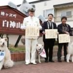 青森 ・鰺ケ沢駅「ブサカワ・わさお」に観光駅長を委嘱  3匹でPR!(4月1日)