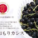 「AoMoLink~赤坂~」で今が旬の「青森・特産品」を 味わえるイベント開催! 2018年9月28日