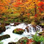青森・八戸-奥入瀬渓流・十和田湖= 2018年10月1日~2018年11月4日の時刻表