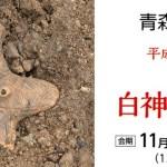 青森県立郷土館=企画展「新説!白神のいにしえ」開催!2018年11月21日~