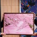 弘前公園「花筏」が「世界の絶景カレンダー13」に採用!