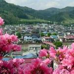 2019大鰐温泉茶臼山公園つつじまつり開催!