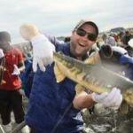 青森・第14回日本一の「おいらせ鮭まつり」開催!