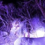 冬の奥入瀬氷瀑ナイトツアー:2020年1月10日~3月15日