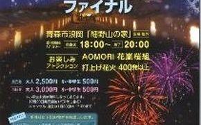 第17回 「細野相沢冬物語」打上げ花火を楽しむ!
