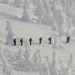 青森「八甲田ルール」:管理区域外スキーで遭難増 対策へ自己負担求める