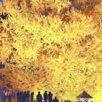 日本一の大イチョウ、夜に浮かぶ…推定樹齢1000年(青森県深浦町)