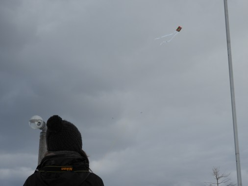 Watching the kite fly through the sky