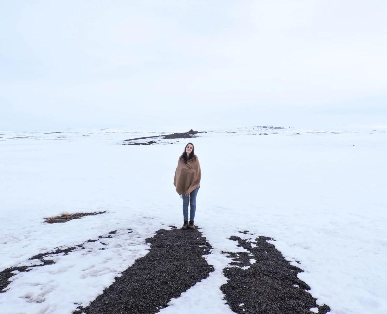 A Flora em meio a paisagem nevada