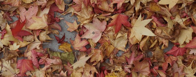 Capture d'écran 2015-10-21 à 09.37.29