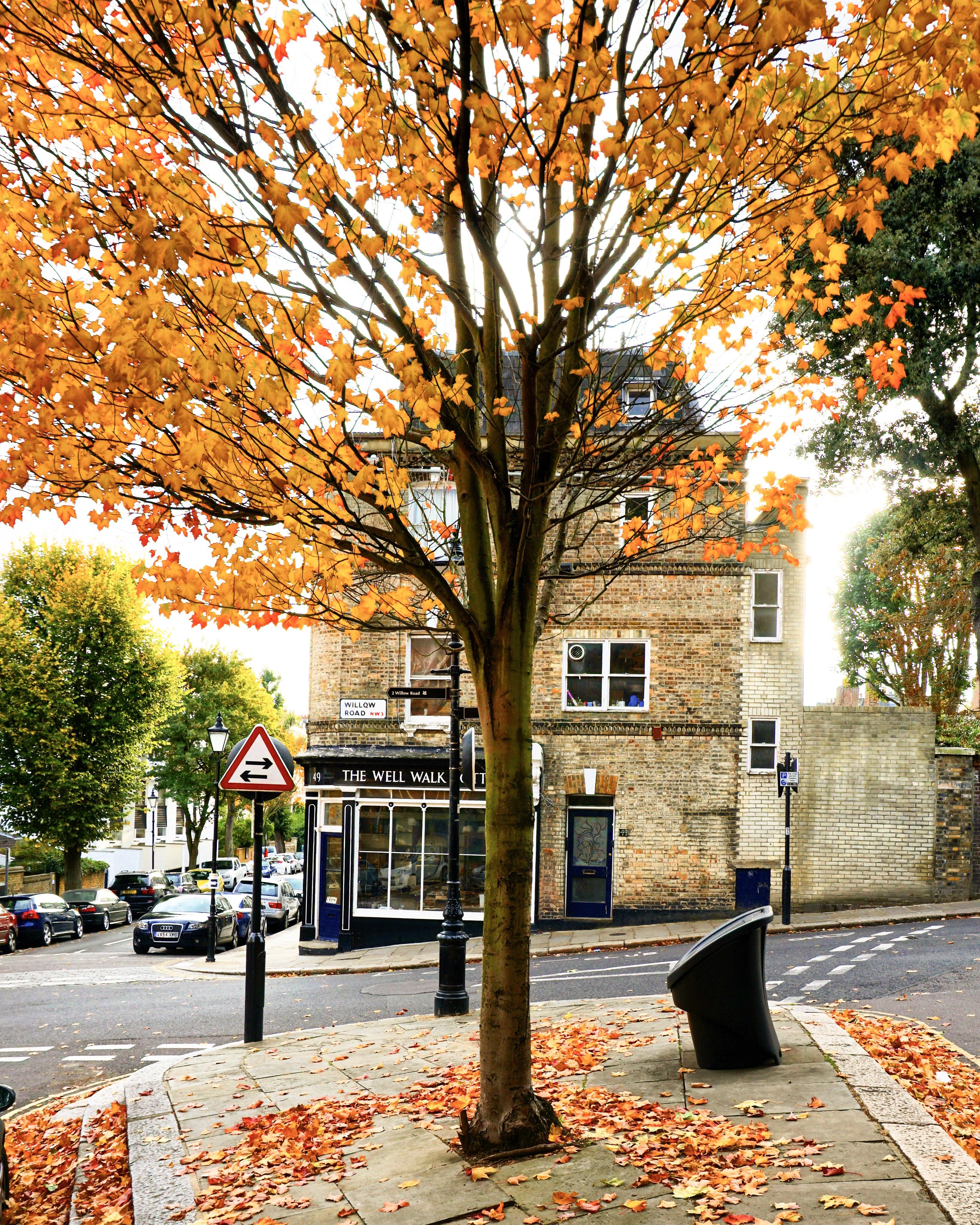 L'automne à Londres
