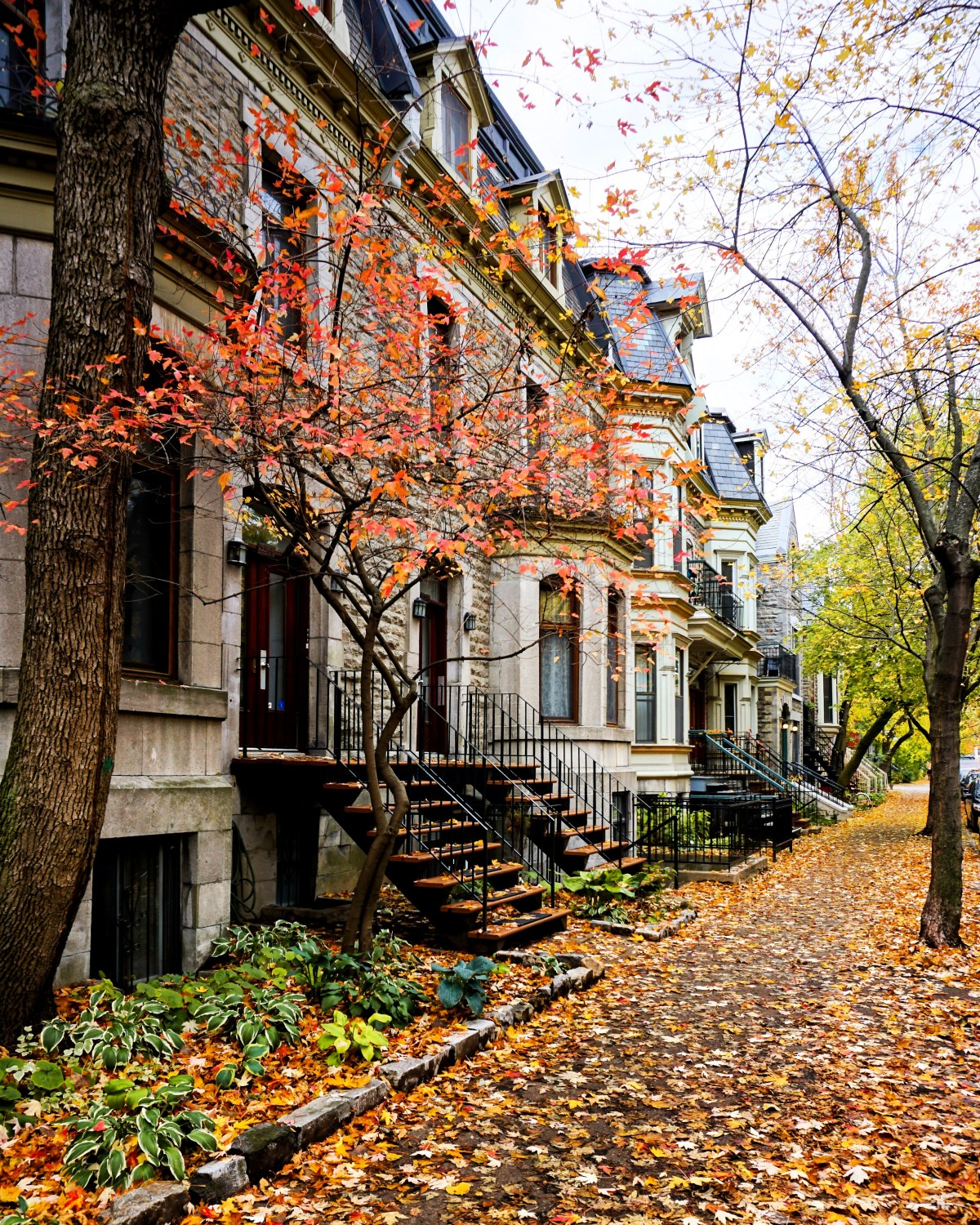 most beautiful streets of Montreal