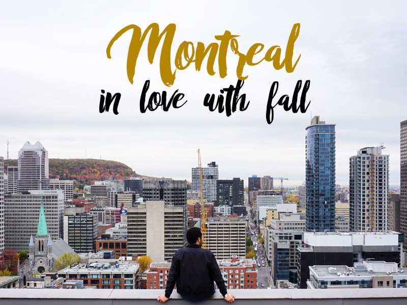 Blogpost about fall in Montreal