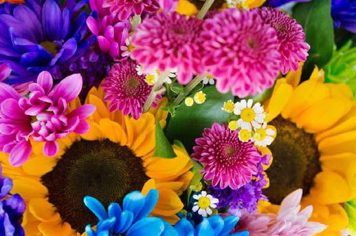 蜷川実花の丸の内で行われる個展の開催日時は?混雑予想や口コミも!