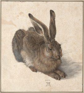 Dürer Ausstellung in der Albertina in Wien @ Albertina Museum Wien