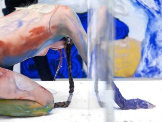 Donna Huanca EPITHELIAL ECHO, Art On Screen - NEWS - [AOS] Magazine