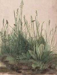 Albrecht Dürer Ausstellung, Albrecht Dürers Zeichnungen, Meisterwerke und Zeichnungen, Ausstellung in der Albertina, Das große Rasenstück