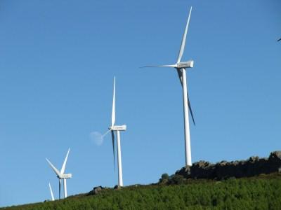 HowTo小型風力が良くわかる|C&Fアジアパシフィック代表インタビュー