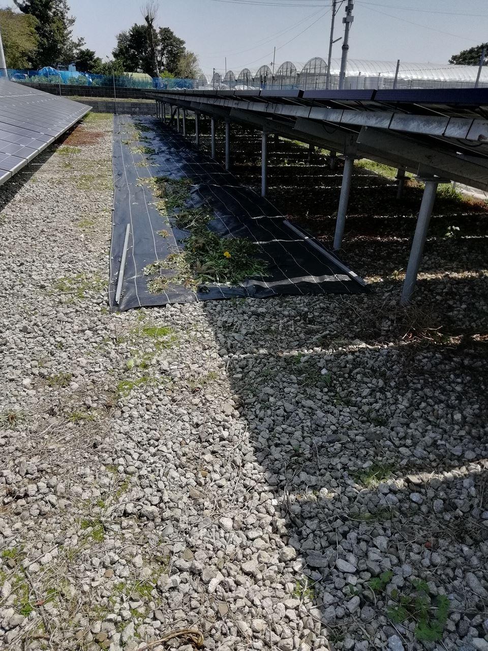 春の太陽光発電所の点検完了!メンテナンスガイドブックが役立ちました