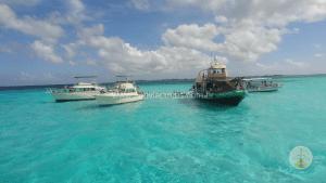 porque-fazer-um-cruzeiro-cayman-island
