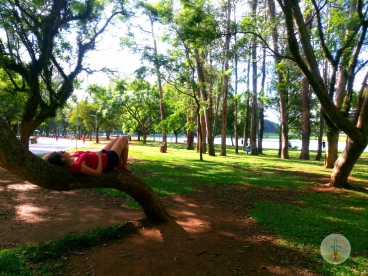 conheça-são-paulo-em-4-dias-ibirapuera Conheça São Paulo em 4 dias ou mais (o MELHOR roteiro)