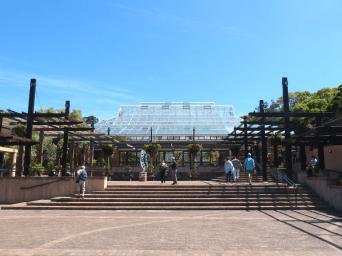 Roteiro-Cidade-do-Cabo-4-a-7-dias-Kirstenbosch-National-Garden Roteiro Cidade do Cabo 4 a 7 dias (Sensacional)!