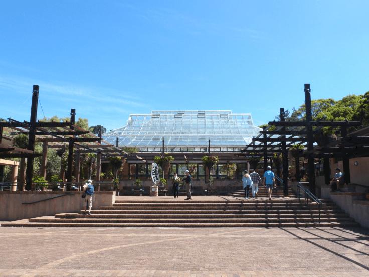 Roteiro Cidade do Cabo 4 a 7 dias Kirstenbosch National Garden