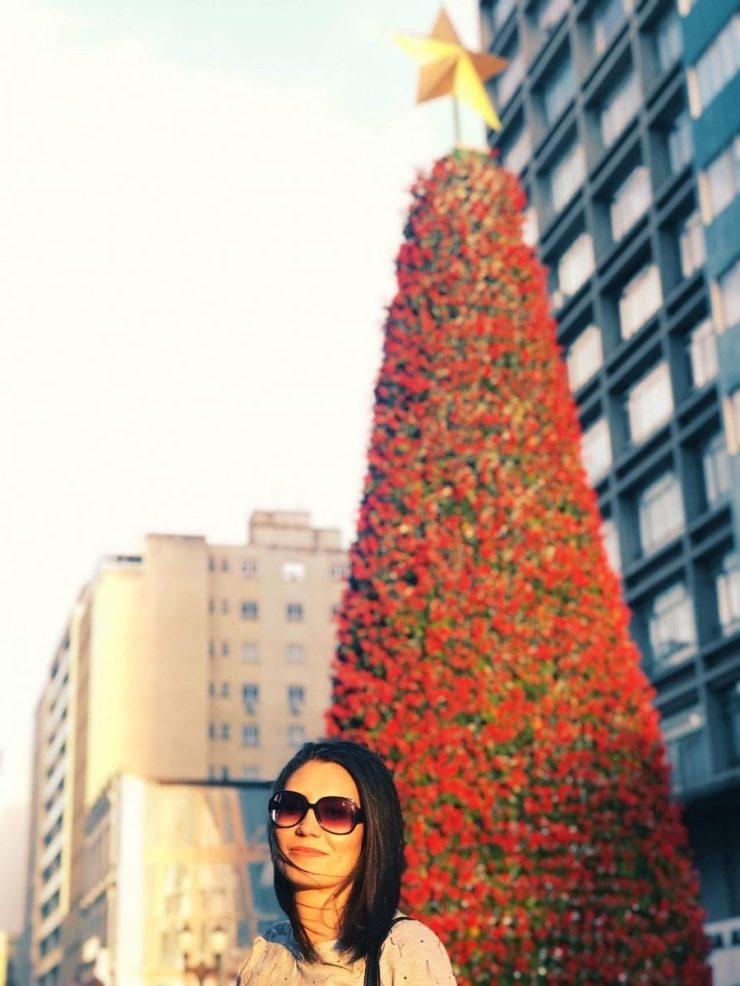 Natal-em-Curitiba-programacao-onde-se-hospedar-e1571704171834 Tudo sobre o Natal em Curitiba e programação (Guia)