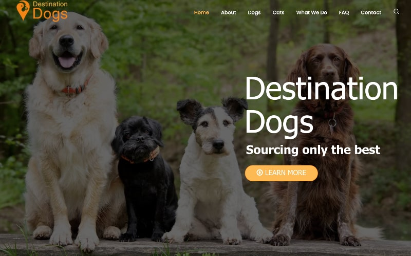 Destination Dogs homepage