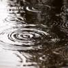 雨の日は関節の痛みが続くから憂鬱・・・痛みを食材で和らげよう!