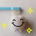 歯磨きカレンダー感想やコメント例文!おうちの人からの一言はこう書こう!
