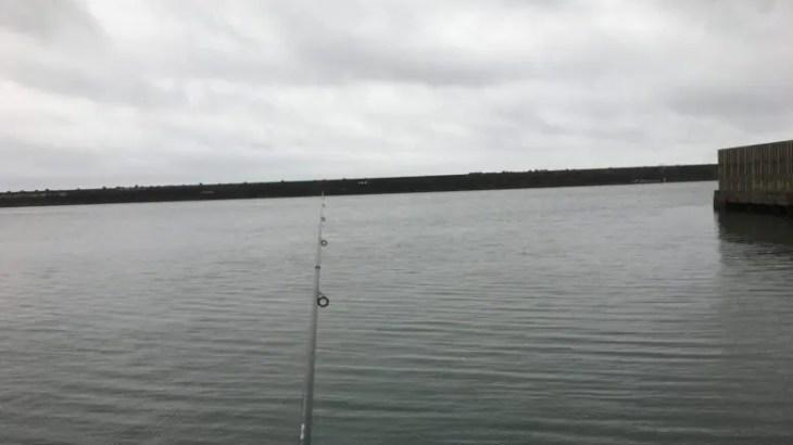 魚バラし日記1