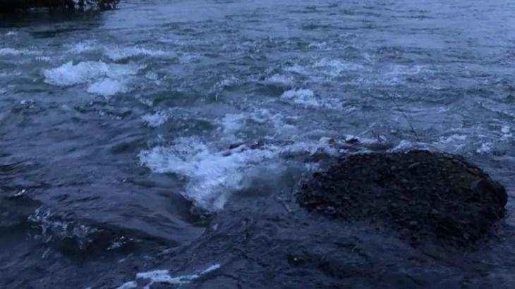 シーバスを追いかけて!夏は河川を上るシーバスを釣りたい。【焼津ルアー釣り日記③】