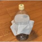 カブトムシの幼虫のペットボトル飼育はじめてみました!