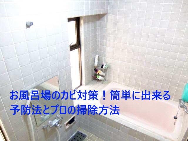 お風呂場のカビ対策!簡単に出来る予防法とプロの掃除方法