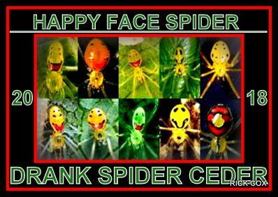 happy face spider  # 82
