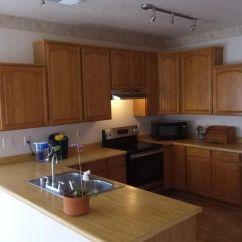 Enchanted Home Mackenzie Pet Sofa Loveseats And Sofas For Cheap 7200 Ct Ne Rio Rancho Nm 87144 Realtor Com
