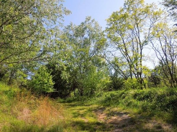 Point Lookout Mtn Lot 132 Independence VA 24348 Home
