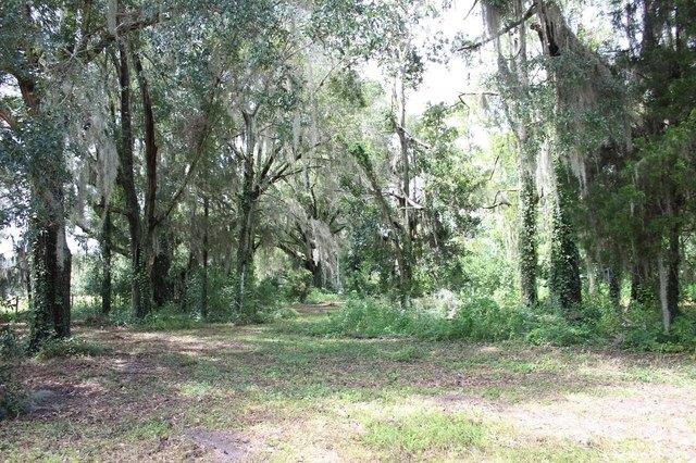 Farm land featured at 2955 SW SR 14 Hwy, Madison, FL 32340