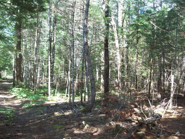 Farm land featured at Swimming Hole Rd, Macwahoc Plt, ME 04451