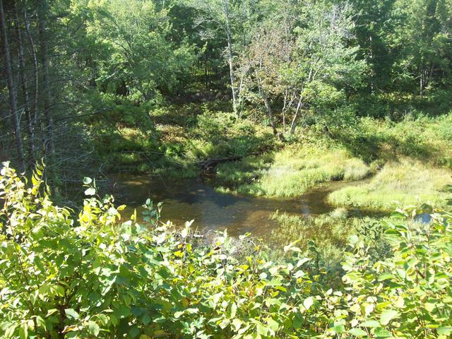 Water front featured at Swimming Hole Rd, Macwahoc Plt, ME 04451