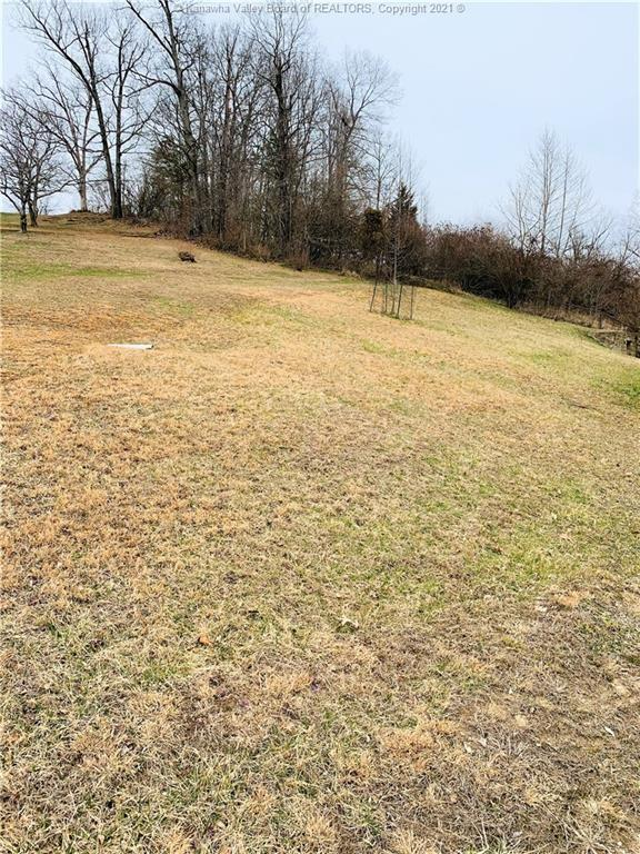 Yard featured at 42 Turley Rd, Alum Creek, WV 25003