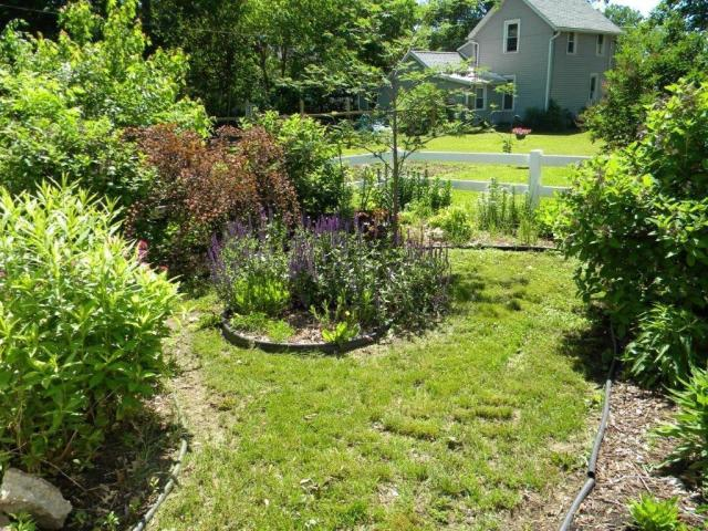 Yard featured at 407 W 9th St, Sterling, IL 61081