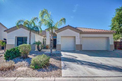 Salerno Ranch Mesa AZ Real Estate  Homes for Sale