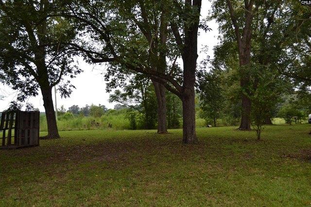 Farm land featured at 956 N Edisto Rd, Leesville, SC 29070